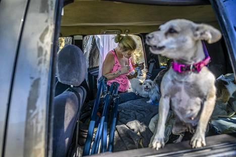 Koira on kodittoman paras ystävä. Laurenen oma on nimeltään Princessa ja Gwenin Queenie. Laurene kiertää ruokkimassa muiden kodittomien koiria.