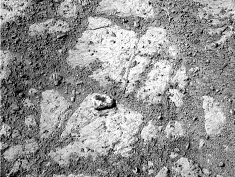 Kivi näkyy selvästi keskellä kuvaa.