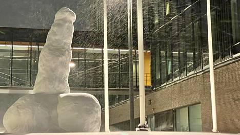 Lumipenis on hämmästyttänyt kirkkonummelaisia keskiviikkona. Puoliltapäivin se oli jo kaadettu.
