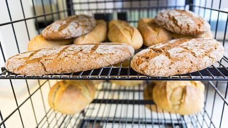 Gluteenia on muun muassa vehnässä, ohrassa ja rukiissa.