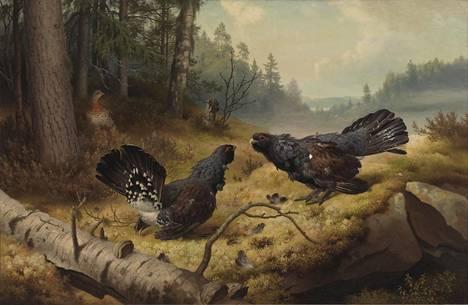 Ferdinand von Wrightin, Taistelevat metsot