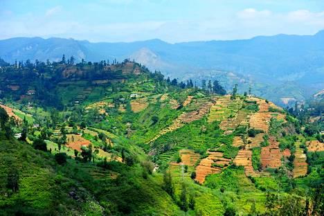 Yksi tämän vuoden mahdollisista matkakohteista on Sri Lanka.