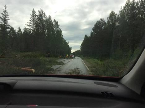 Tuuli kaatoi puita tielle Kerimäellä.