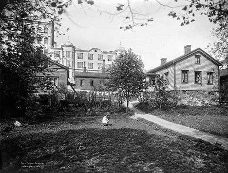 8. Piha Pohjoisrannassa vuonna 1907.