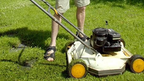 Jos nurmikko on vasta kylvetty, sen tulee antaa kasvaa 5-10 sentin korkeuteen ennen ensimmäistä leikkausta.