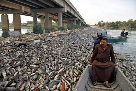 """Irakilaismiehet katselevat ihmeissään kuolleiden kalojen """"merta"""" Eufrat-joella."""