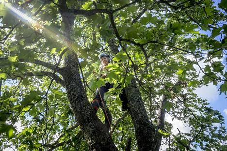 """""""Jos mieli on maassa, niin mikä olisi mukavampaa kuin mennä metsään."""""""