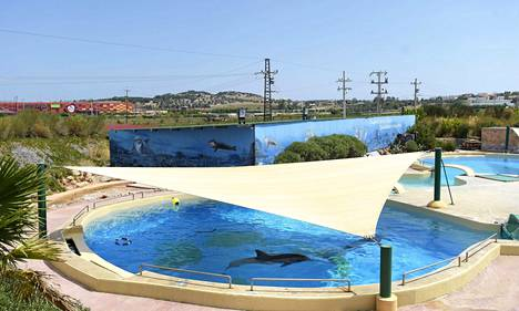 Tampereen Särkänniemen delfiinien allas Attican eläinpuistossa Ateenassa.