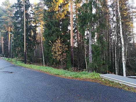 Myös kaistale metsää on rajattu.