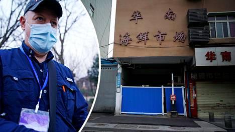 Maailman terveysjärjestö WHO:n tutkijaryhmän jäsen Peter Daszak kertoo Kiinan viranomaisten sulkeneen epidemian alussa ripeästi samat villieläintilat, joiden tuotteita kuljetettiin Huananin torille Wuhaniin.