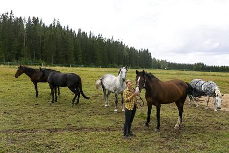 Tuulispään eläinsuojelukeskuksessa asuu kuusi hevosta. Tulijoita olisi useita satoja.