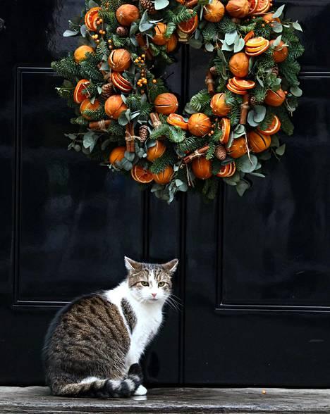 Britannian pääministerin asunnossa hoitaa hiirestäjän virkaa Larry-kissa.