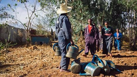 Etiopia oli yksi ulkoministeriön sisäisen tarkastuksen arvioimista kohteista. Kuva Etiopiasta vuodelta 2015, kuvassa on kaupunkiviljelmä entisellä kaatopaikalla.