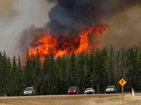 Metsä roihusi Kanadan Albertassa pari viikkoa sitten