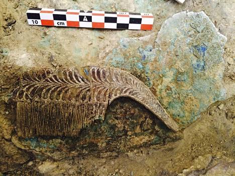 Haudan, josta arvoesineet löytyivät, arvellaan kuuluneen noin 30-35 vuoden iässä kuolleelle sotilaalle.