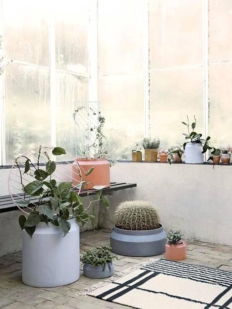 Betonipinnat ja ruukkuviljely ovat trendikkäitä niin sisä- kuin ulkosisustuksessakin.