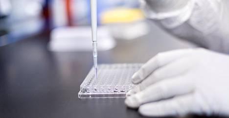 Rokotetta tutkitaan Modernan laboratoriossa.