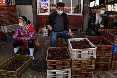 Wuhanin ruokatorilla kapiteltiin rapuja viime vuonna.