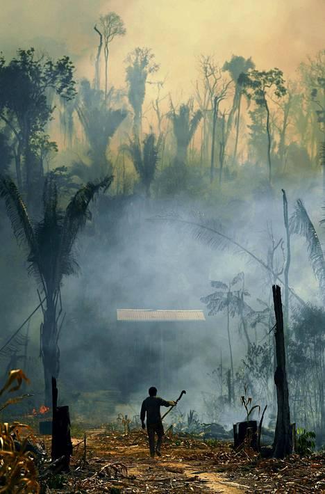 Luontokato ja elinympäristöjen pirstoutuminen ihmisen vaikutuksesta jatkuvat. Maankäytön suunnittelu ja luonnon suojeleminen ehkäisisivät pandemioita ennalta.
