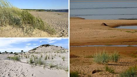 Suomessa näkyvimmät dyynit sijaitsevat rannikkoseudulla. Poimimme viisi kivaa dyynikohdetta matkailijoiden iloksi.