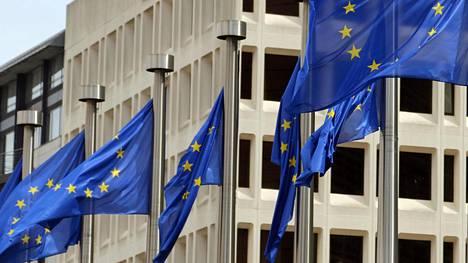 EU-lippuja kuvituskuvassa.