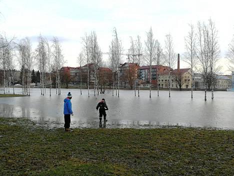 Kokemäenjoki tulvii Porin Kirjurinluodossa.
