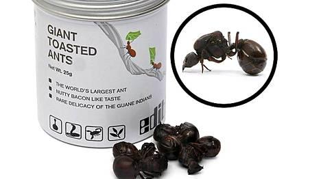 Nämä ovat kalliita muurahaisia. Ehkä tämä herkku kannattaa valmistaa itse?