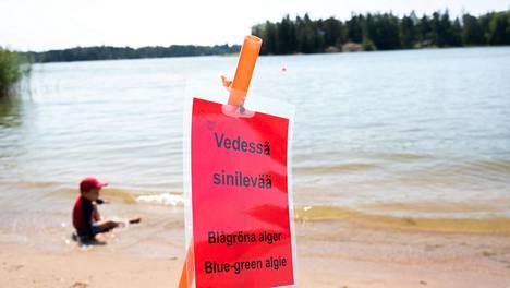 Myrkyllinen sinilevä aiheuttaa ihmisille muun muassa flunssan kaltaisia oireita sekä iho-oireita.