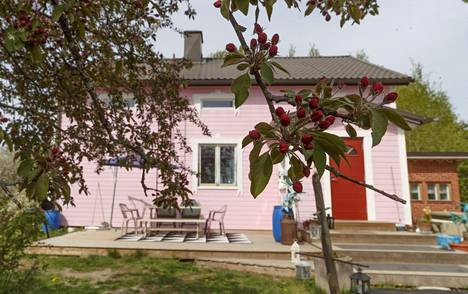 Koristekirsikkapuun puna on varjossa taloa tummempaa.