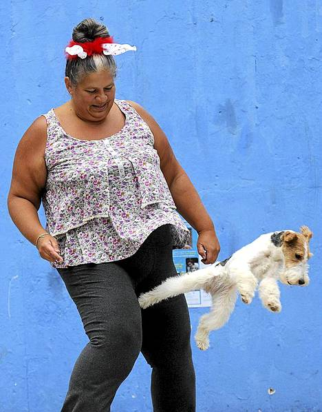 Koteja kodittomille eläimille. Eläinaktivisti leikkii koiran kanssa mielenosoituksessa Minskissä Valko-Venäjällä. Aktivistit järjestivät mielenosoituksen kodittomien eläinten puolesta.
