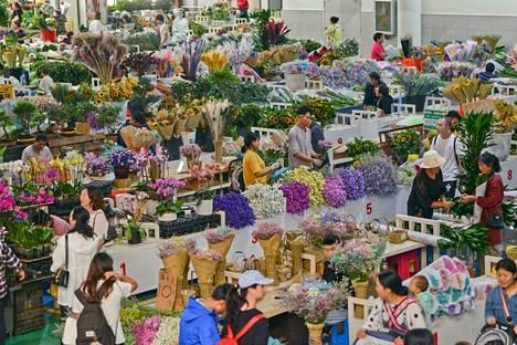 Antaa kaikkien kukkia. Kiinalaiset tekivät maanantaina ostoksia Kunmingin kaupungissa sijaitsevassa kukkatukussa.