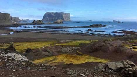 Arkistokuva alueelta, jolla Chilen ilmoittamat sairastuneet ovat työskennelleet Etelämantereella.