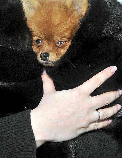Nainen kantoi koiraansa paksun turkkinsa sisällä Ukrainan Kiovassa torstaina. Pakkasta oli 27 astetta.
