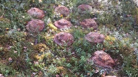 Raivaajat hävittivät räjäyttämällä 14 jatkosodanaikaista telamiinaa.
