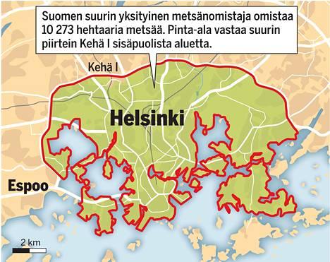 Suomen Suurin Yksityinen Metsanomistaja On Antti Herlin