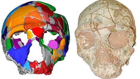 Kreikkalaisesta luolasta 1970-luvulla löytyneitä pääkalloja tutkittiin uudestaan modernein menetelmin.