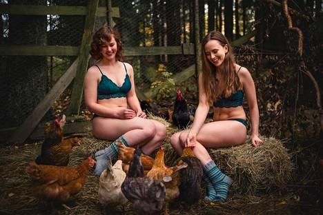 Eläinten kanssa työskentelyssä on aina omat ongelmansa mukana. Marraskuun kalenterikuvassa on mukana kanoja, jotka eivät halunneet poseerata kameralle.