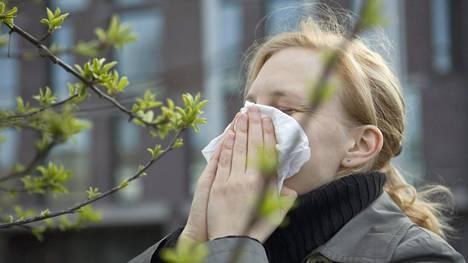 Allergisten kannattaa suunnata nenäliinaostoksille, sillä tiedossa on paljon siitepölyä.