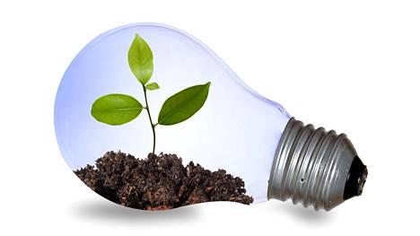 Valo on kasveille elinehto, eikä etenkään talvella luonnonvalo riitä tukemaan melko korkean huonelämpötilan ylläpitämää kasvua.