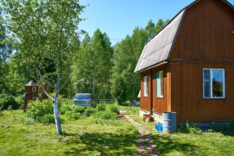 Monilla on kokemusta siitä, että mökkinaapurit tulevat mökille vain hoitamaan pihatöitä eivätkä jää nauttimaan kesästä tai työn tuloksista.