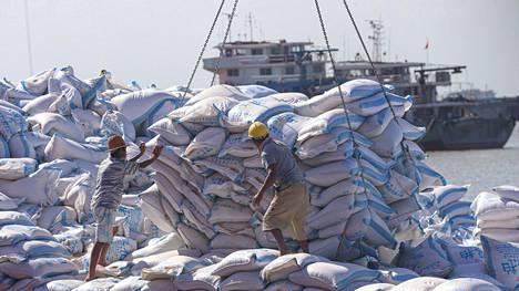 Soijaa lastataan Nantongin satamassa Kiinan rannikolla.