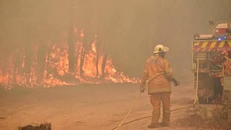 Pelastajat sytyttivät vastapalon Jerrawangalan kylässä uudenvuodenpäivänä, ennen kuin maastopalot saavuttavat kylän.