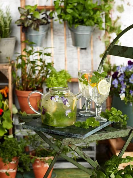 Täytä kannu tai lasit jäillä, laita joukkoon sitruunasiivuja, tuoretta sitruunamelissaa ja kukkia koristeeksi.