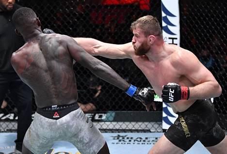 """Blachowicz (oik.) sanoo käyttävänsä häkissä """"legendaarista puolalaista voimaa"""". Kuvassa voimaa saa maistaa Israel Adesanya (vas.), keskisarjan UFC-mestari."""