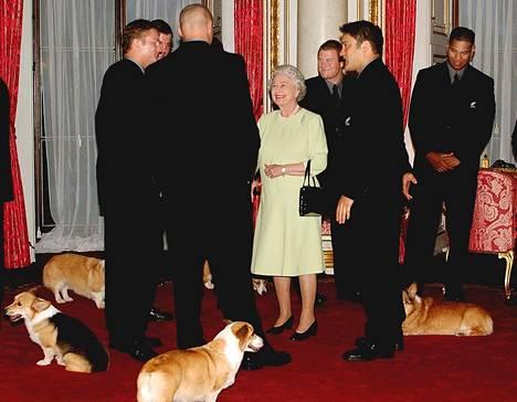 Elisabet tapasi koiriensa kanssa rugbyjoukkueen.