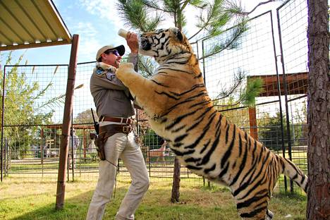 Joe Exotic nousi maailmanmaineeseen Netflixin Tiger King: Villi ja vaarallinen tiikeribisnes -dokumenttisarjan kautta vuonna 2020. Sarja ilmestyi maaliskuussa 2020, ja sitä katsottiin vain ensimmäisten kymmenen päivän aikana yhteensä yli 34 miljoonaa kertaa ympäri maapalloa.