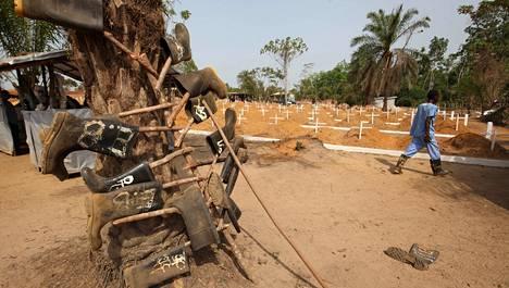 Työntekijä käveli ebolaan kuolleiden hautausmaalla Liberiassa maaliskuussa. Hautaajien saappaat ovat kuivumassa desinfioinnin jälkeen puussa. Viime kuussa kerrottiin, että ebolaa ei enää ole Liberiassa. Viranomaiset ovat kuitenkin huolissaan siitä, että tauti leviää maahan takaisin Sierra Leonesta tai Guineasta.