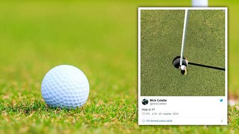 Golfmaailma kiistelee tästä kuvasta: Onko pallo reiässä vai ei?