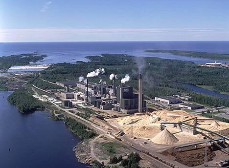 Nykyisellä Metsä Groupilla oli Kaskisissa aiemmin myös sellutehdas. Se suljettiin 2009.