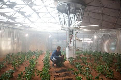 Yksin Marsissa -elokuvan päätähti Mark Watney (Matt Damon) yrittää selviytyä viljelemällä perunoita.